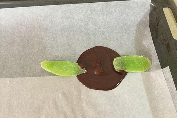 הדבקת-עלים-לשוקולד