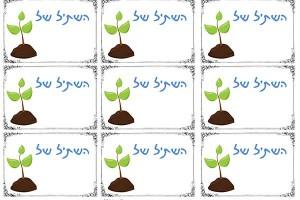 זרעים-של-אהבה---קטן-יותר-3
