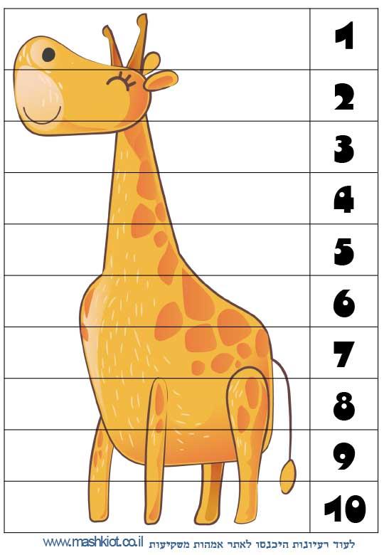 לומדים-מספרים-ג'ירפה
