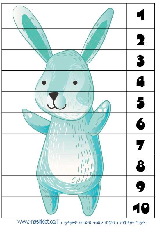 לומדים-מספרים-שפן