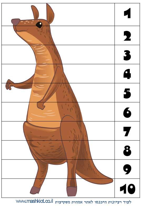 לומדים-מספרים-קנגרו